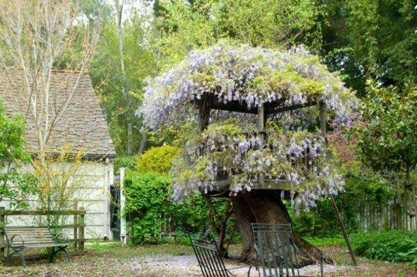 univers déco jardin arbre