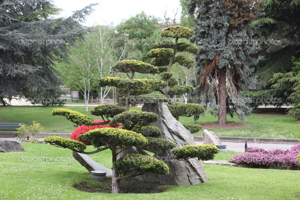 agencement déco jardin arbre