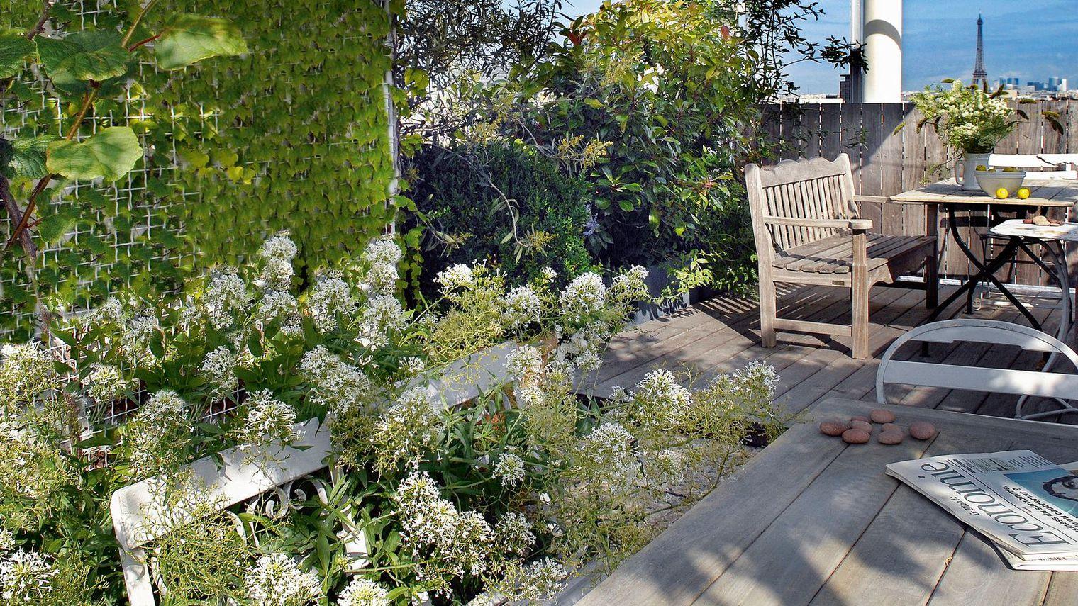 aménagement déco jardin cote maison