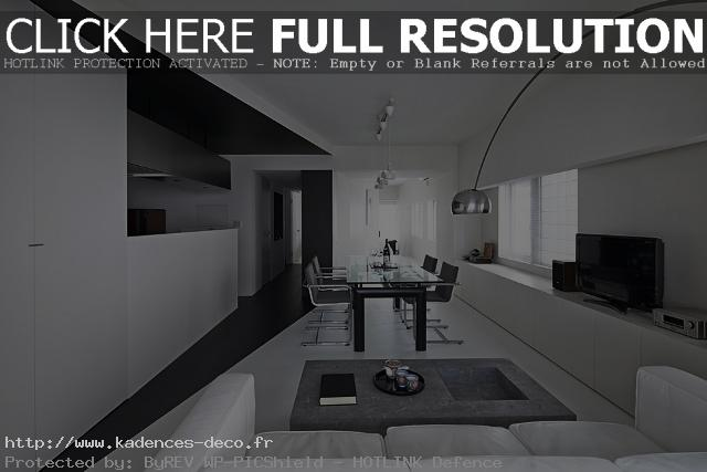 exemple déco maison noir blanc gris