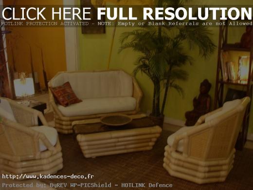idée déco salon zen bambou