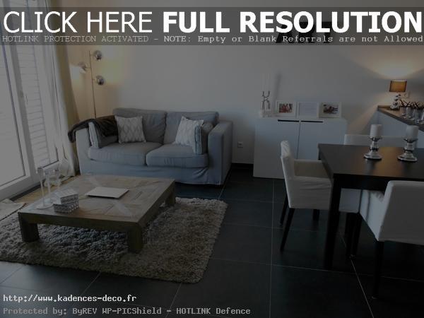 organisation décoration appartement jeune couple