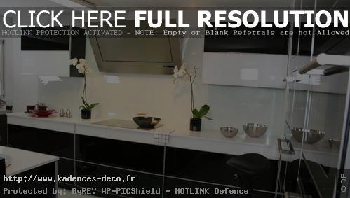 exemple décoration cuisine blanc noire