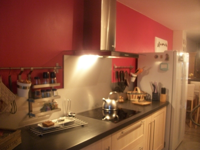 photo décoration cuisine couleur framboise