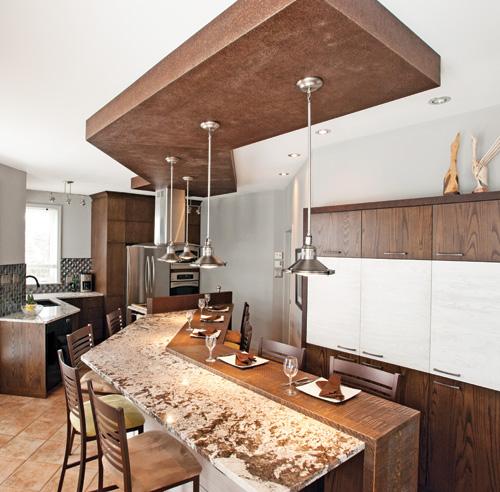 modèle décoration cuisine stainless