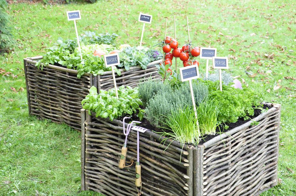 décoration jardin potager