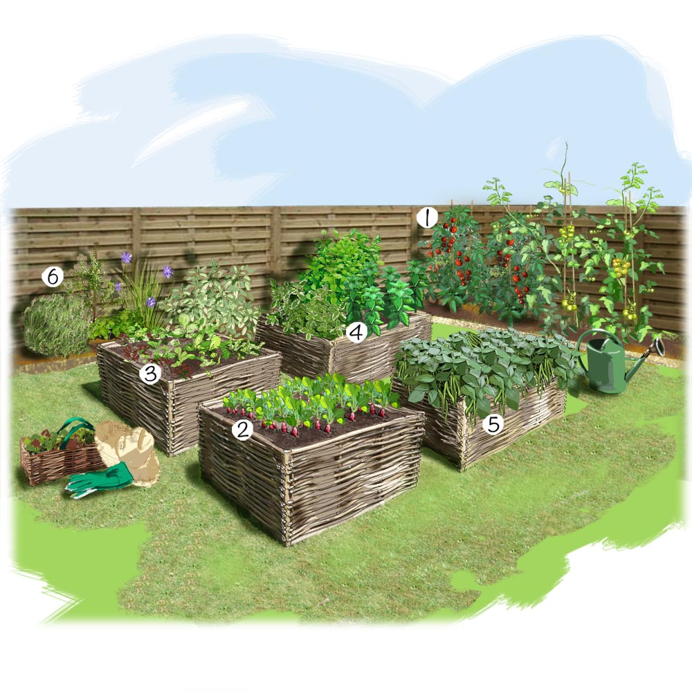 aménagement décoration jardin potager