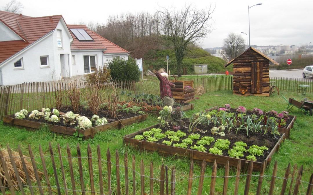 agencement décoration jardin potager