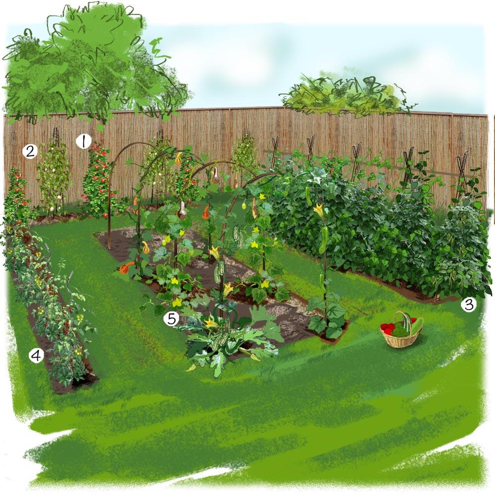 modèle décoration jardin potager