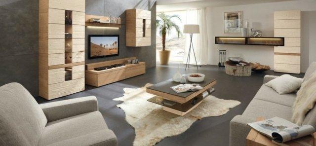 aménagement décoration salon gris et bois