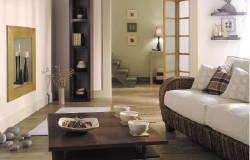 Décoration salon meuble wenge