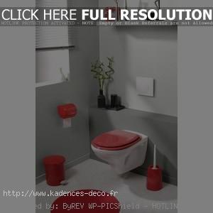 idée décoration toilettes rouge et gris