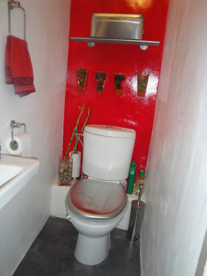 univers décoration toilettes rouge et gris